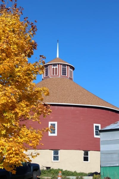 A view of the barn on a gorgeous fall day!