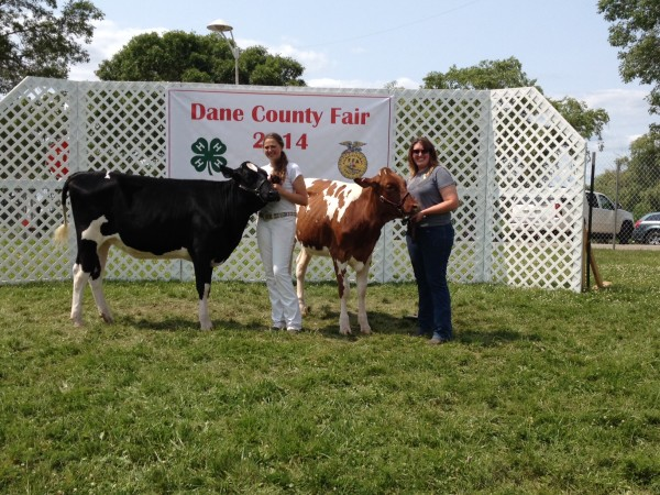 Dane Co Fair, sarah & carrie with heifers