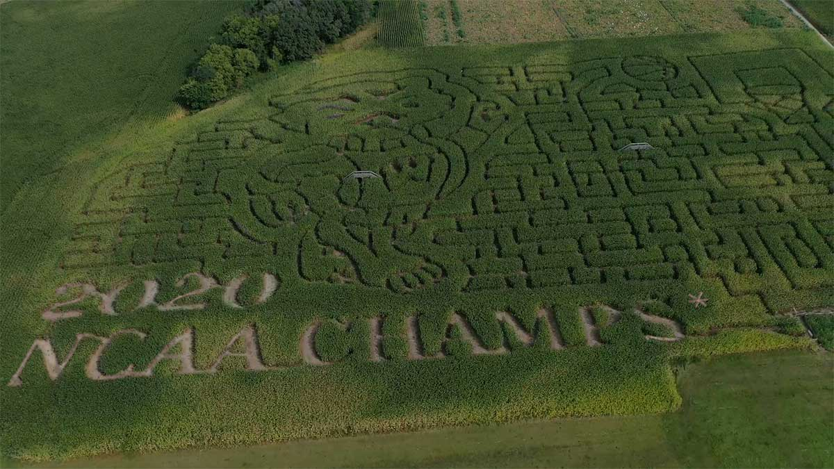 2020 Schuster's Farm Maze Design. 2020 NCAA Champs.